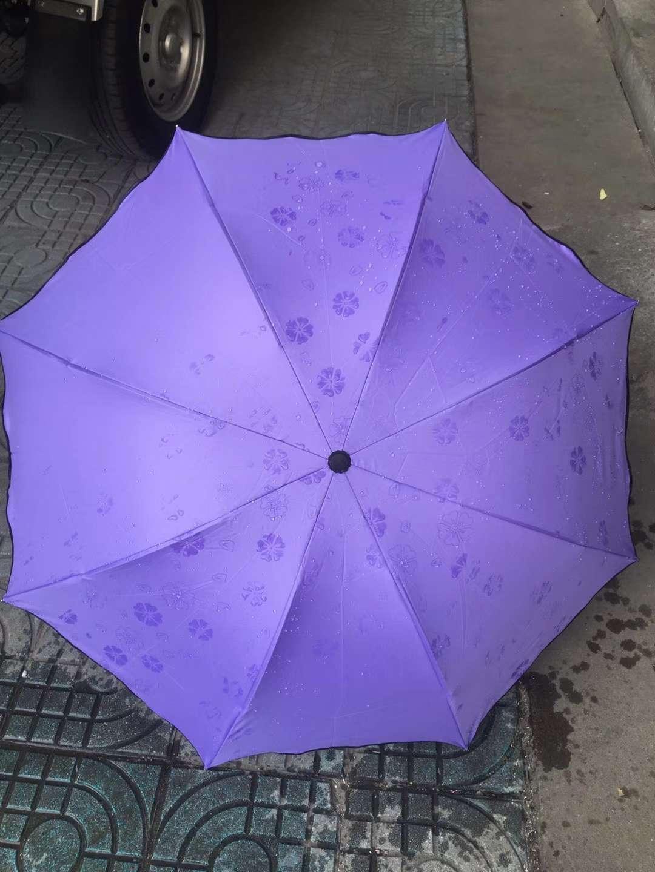睛雨伞广告伞