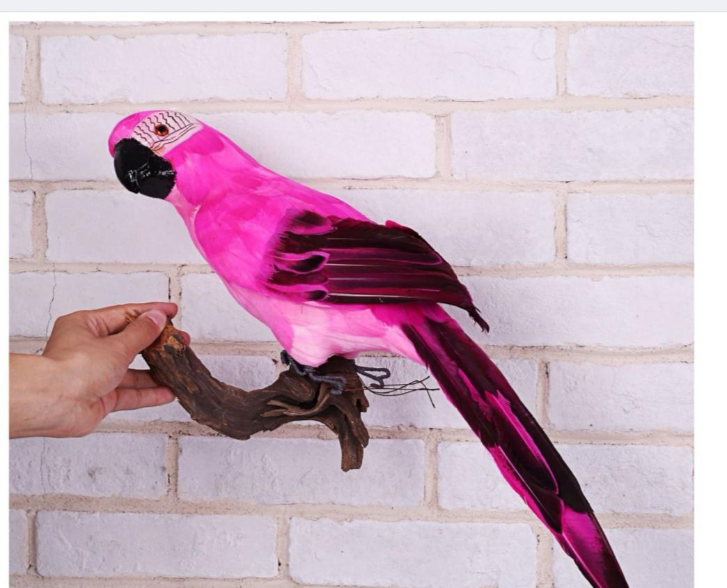 仿真鹦鹉金刚鹦鹉橱窗园艺装饰小鸟泡沫羽毛大鹦鹉家居摆件假鹦鹉