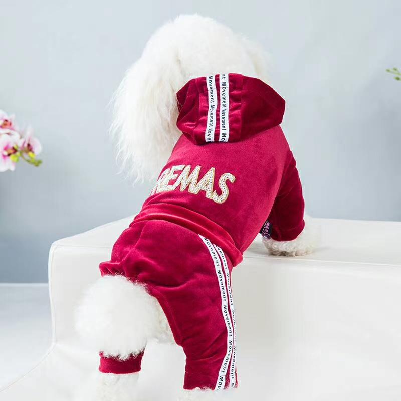 新款高弹金丝绒运动装!深秋季节宠物宝宝们可以穿着舒服看着新潮!高弹力不紧绷,运动装穿着出去公园跑起来更加灵活!