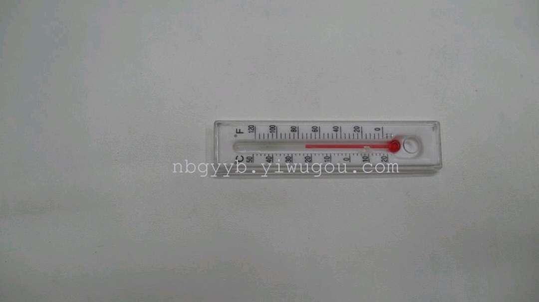 供应塑料片学生教具小温度计