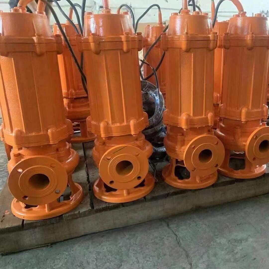 大型污水泵1