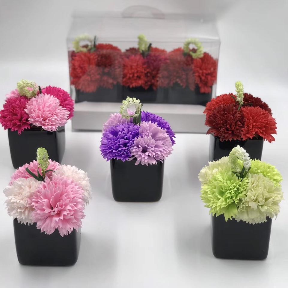 康乃馨花盆