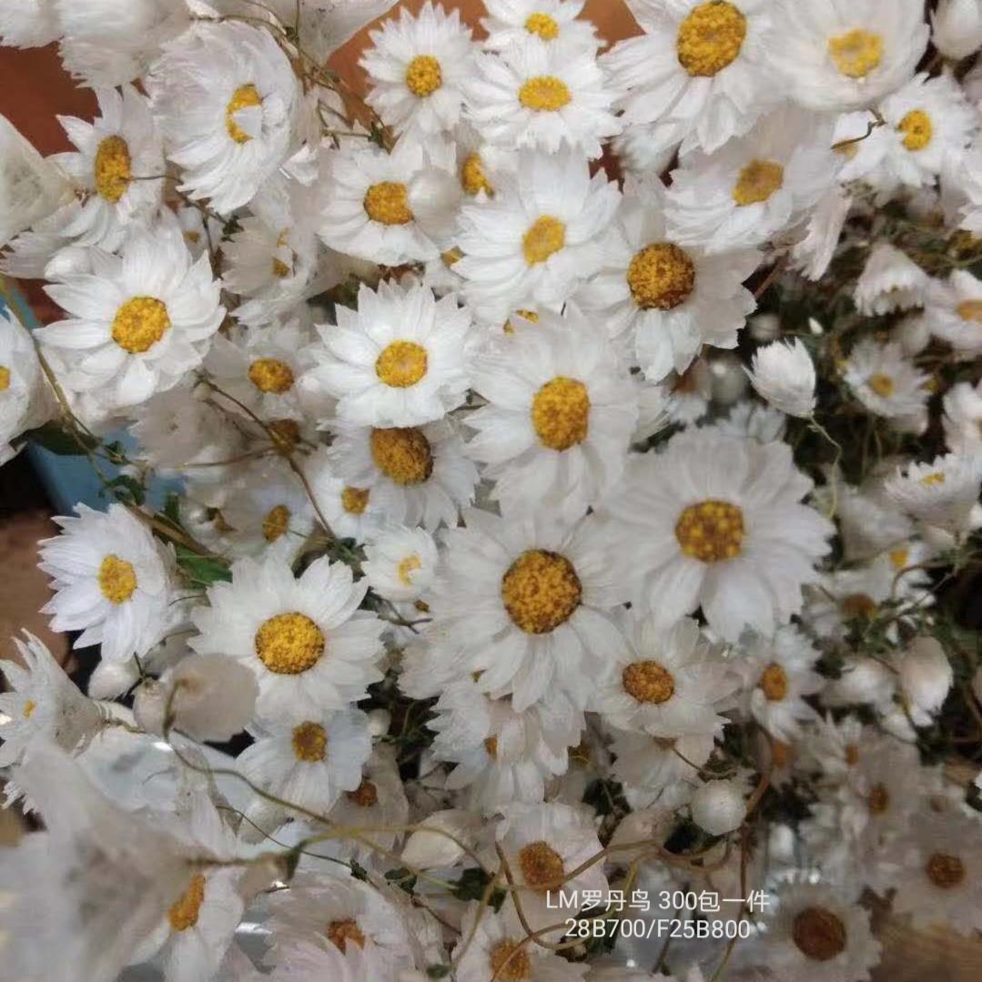 藤条叶子植物仿真花假花插花盆景客厅酒店婚庆录影装饰扎树永生花-1