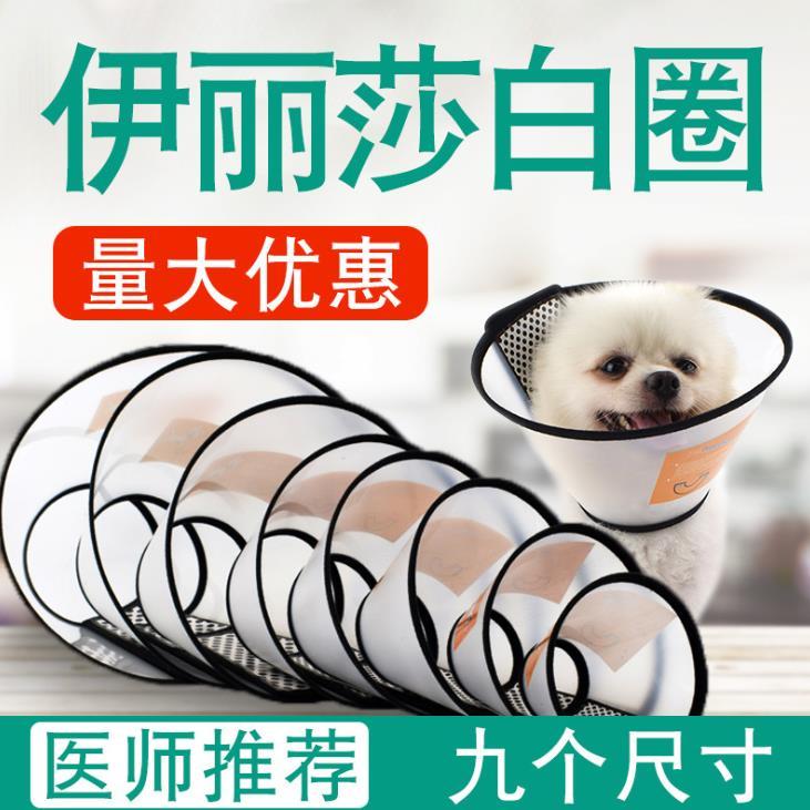 宠物狗狗伊丽莎白圈 狗狗防咬脖圈美容头套 宠物防护用品厂家批发