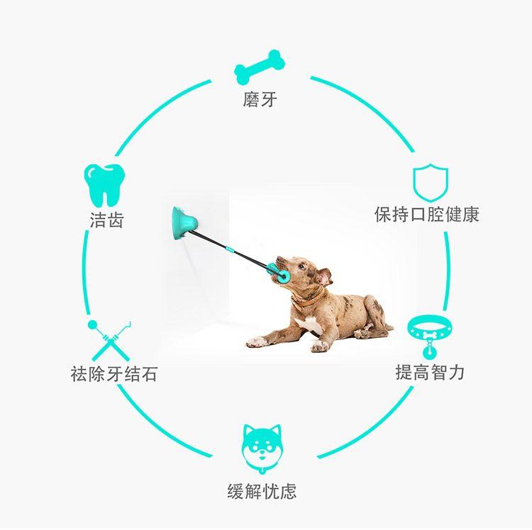 双吸盘锯齿磨牙棒宠物清洁益智玩具狗狗磨牙