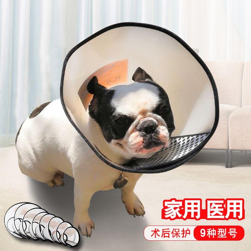 狗狗防咬脖圈美容头套 宠物狗狗伊丽莎白圈 宠物防护用品厂家批发
