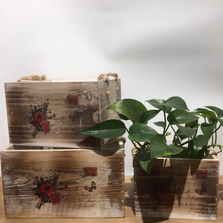 5个性创意型落地手工木质工艺品 多肉植物花盆装饰摆件厂家批发