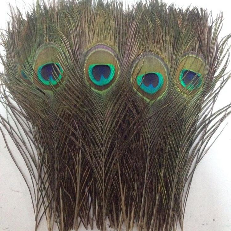 厂家直销孔雀尾羽毛舞台装饰孔雀尾孔雀毛插花羽毛