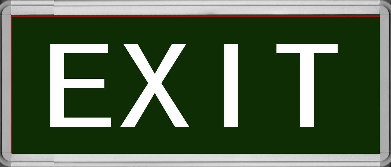 英文应急疏散指示灯单面355*145