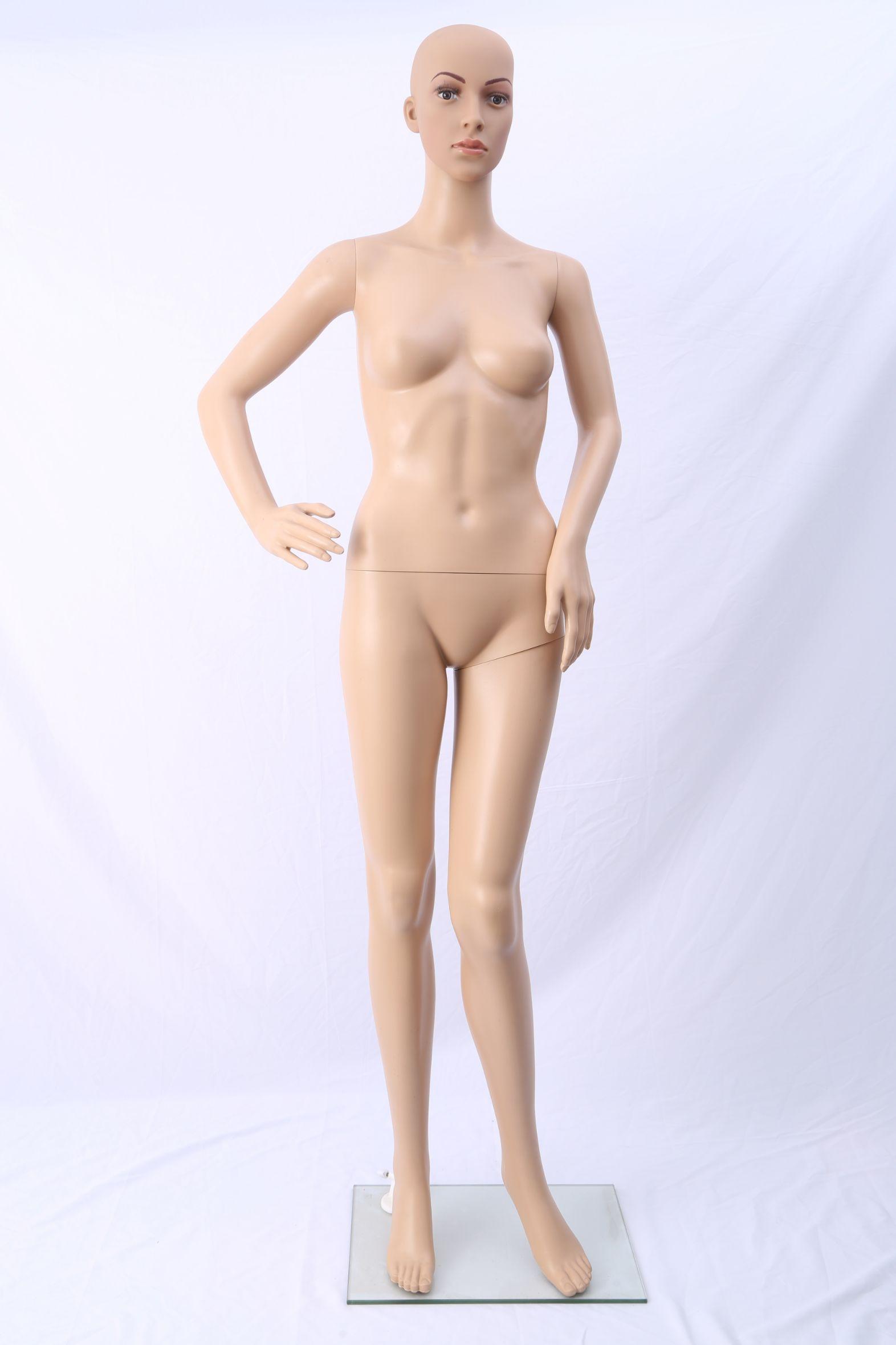 女模特道具性感大胸成人内衣店化妆女全身内衣人体模特厂家直销