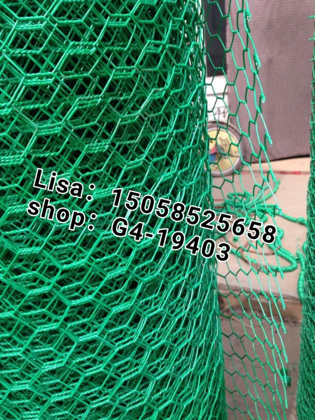 供应浸绿色六角网 六角网 鸡笼网 鸡网 电焊网拧花网镀锌铁丝网