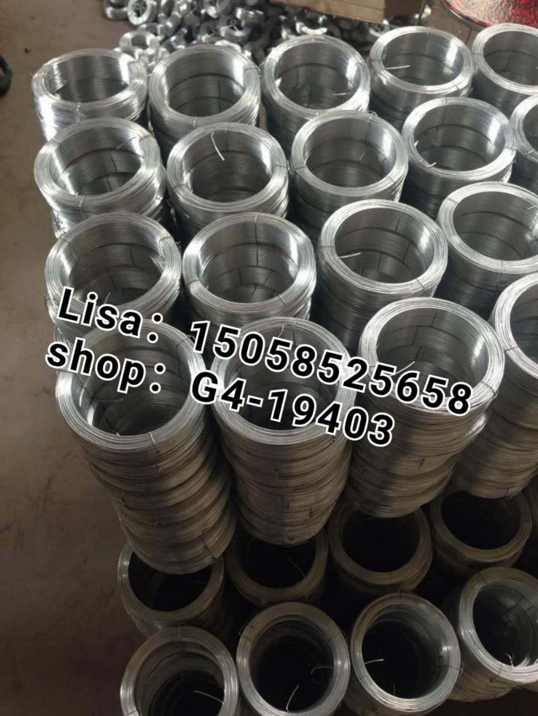 中国好货镀锌铁丝 粗铁丝 绑丝 镀锌丝 大盘丝 电镀丝 白铁丝