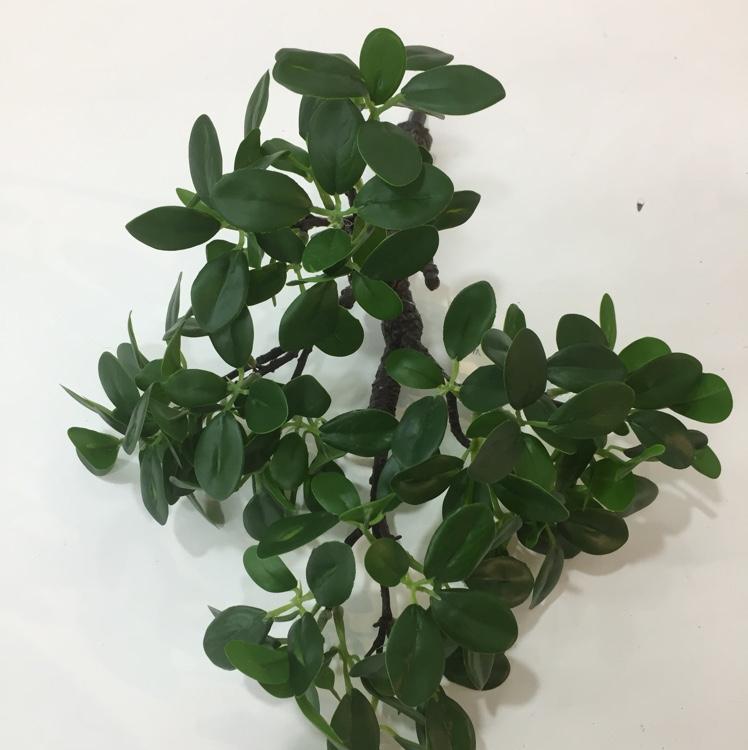 爆款高仿真高品质短枝榕树叶客厅装饰摆件插花植物盆栽