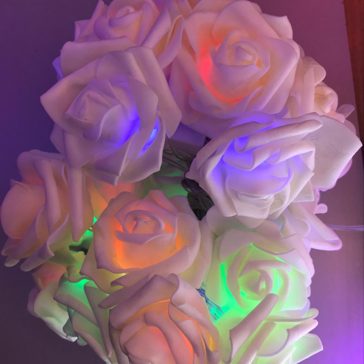 20灯泡沫玫瑰