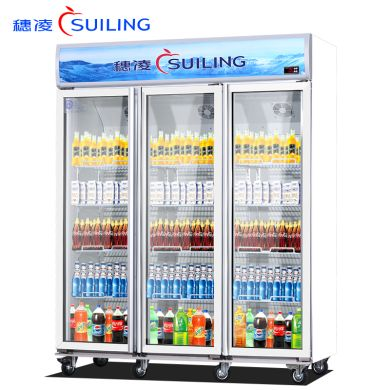 穗凌LG4-323LW带灯箱单温无霜风冷冰箱 立式展示柜冰箱 冰箱 投诉