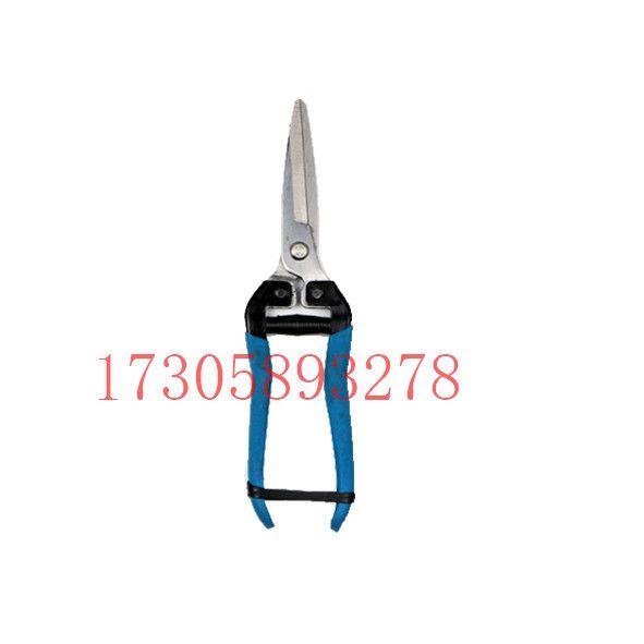 YYJ03A-1 蓝色手柄不锈铁 尖头园艺剪 花枝剪