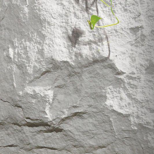 MCM生态石材 凹凸随机起伏 看似厚重 实质轻巧——常规蘑菇石系列